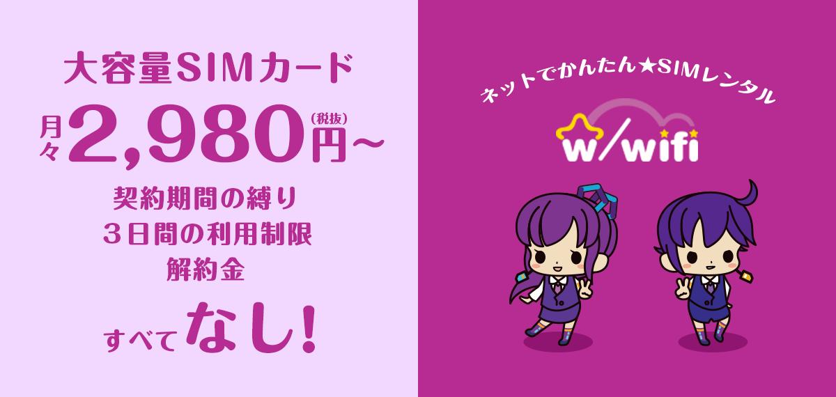 大容量SIMカード月々2,980(税抜)円〜