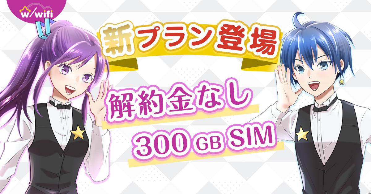 ネットでかんたん★大容量SIMレンタルサービス!w/WiFi…
